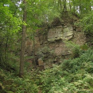 Steinbruch Dunzelloch