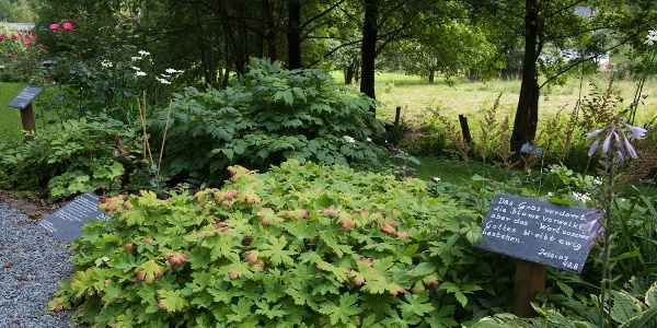 Bibelgarten in Lenne