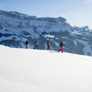 Schneeschuhtour auf der Marbachegg, im Hintergrund der Hohgant