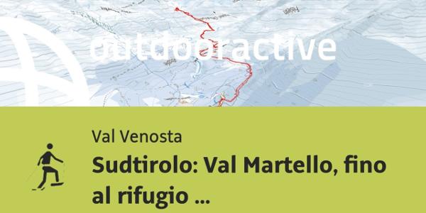 Racchette da neve in Val Venosta: Sudtirolo: Val Martello, fino al rifugio Martello