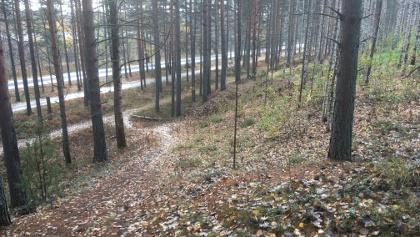 Vuoksenniska ice-marginal delta