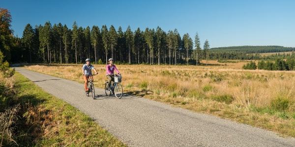 Radfahren im Hohen Venn