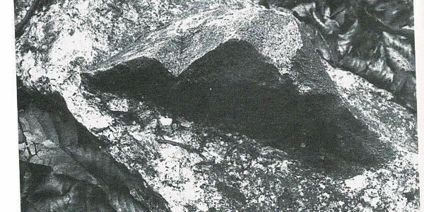 Dunkler Einfluss im Albtalgranit