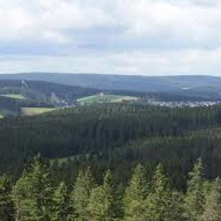 Aussicht vom Stöcklewaldturm