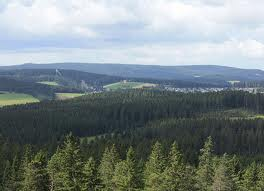 Ferienland-Route ab Schonach im Schwarzwald