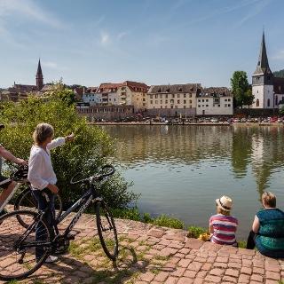 Blick auf Neckargemünd
