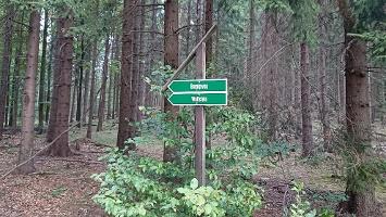 Foto Wegweiser - Wolfsstein + Bernigweg