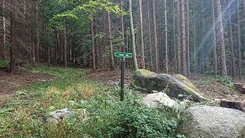 Foto Wegweiser - Wolfsstein