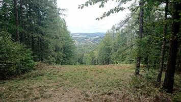 Foto Aussicht - Spitzbergsicht