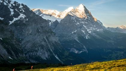 Grindelwald Trail 24