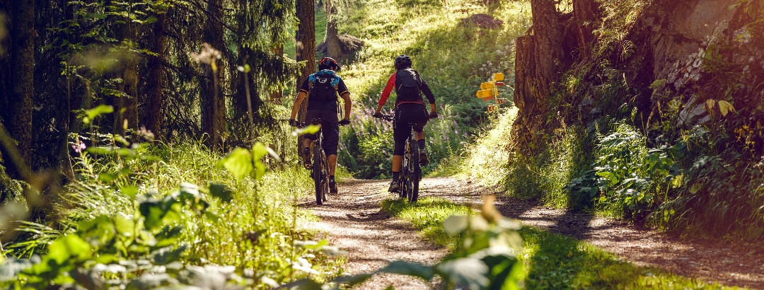 Mountain biker in the forest