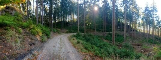 Foto Weg zur Balzhütte