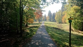 Foto Weg zum Rudolfstein