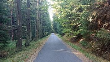 Foto Straße zur Felsenburg Schauenstein