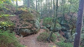 Foto Weg zum Lindigtblick