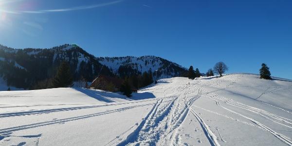 Skispuren auf dem Weg zum Eineguntkopf