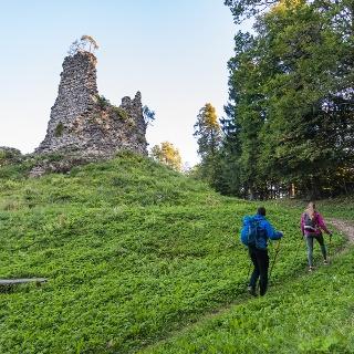 The ruins of Lipnica castle (Pusti grad)