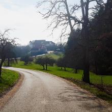 Weg zum Schloß Hohenfels