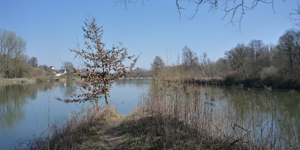 Der Lechspitz (Mündung in die Donau)