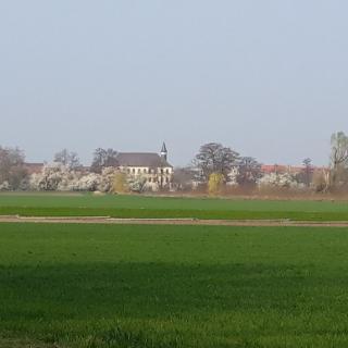 Fußgönheim