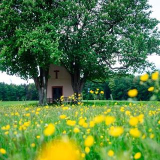 Kapelle Herrenbild Mespelbrunn