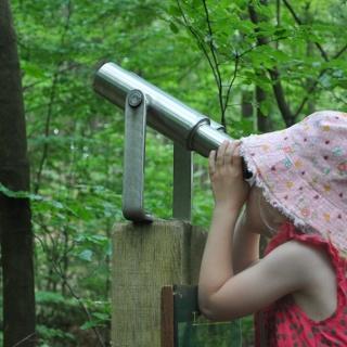 Walderlebnispfad Siegquelle: Kind schaut durch Fernrohr