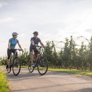 Radfahren, sonnig, Apfelplantage