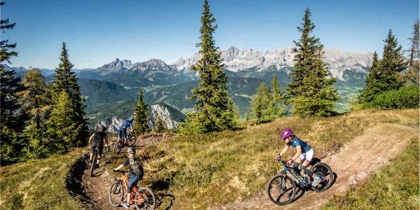 Gassl Trail
