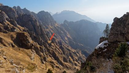 Vista verso l'ampia sella con abete utile riferimento nel Viàz del Cóvol Strigà.