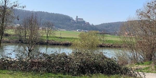Blick auf Burg Guttenberg
