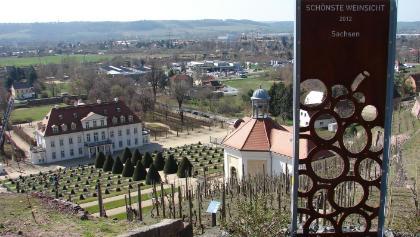 Schönste Weinsicht Sachsen 2012