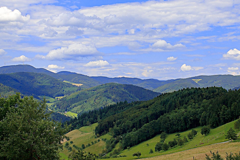 Schwarzwaldlandschaft bei Hausach
