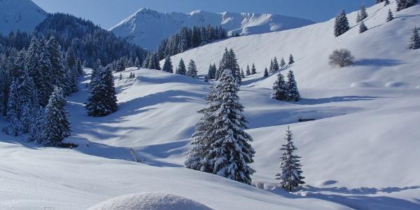 Winterliche Landschaft auf Alp Ottenschwand