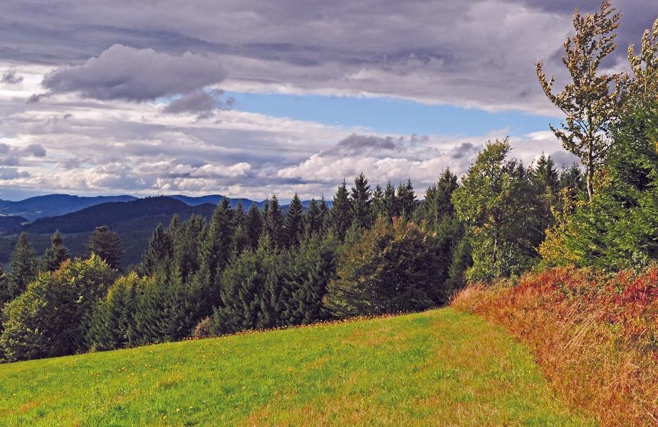 Bad Säckingen: Zum Hornbergbecken