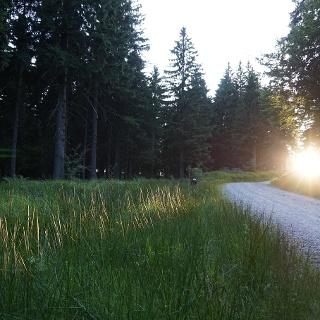 Laufstrecke Schöneben