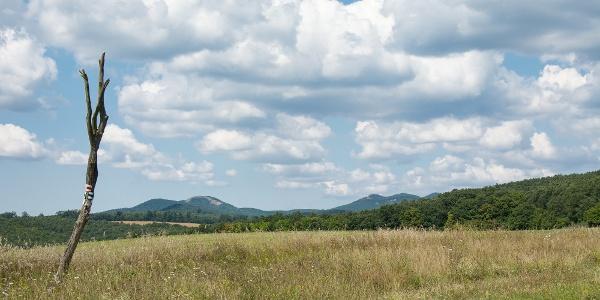 A Márianosztra környéki hegyek a Szent Gál-földről