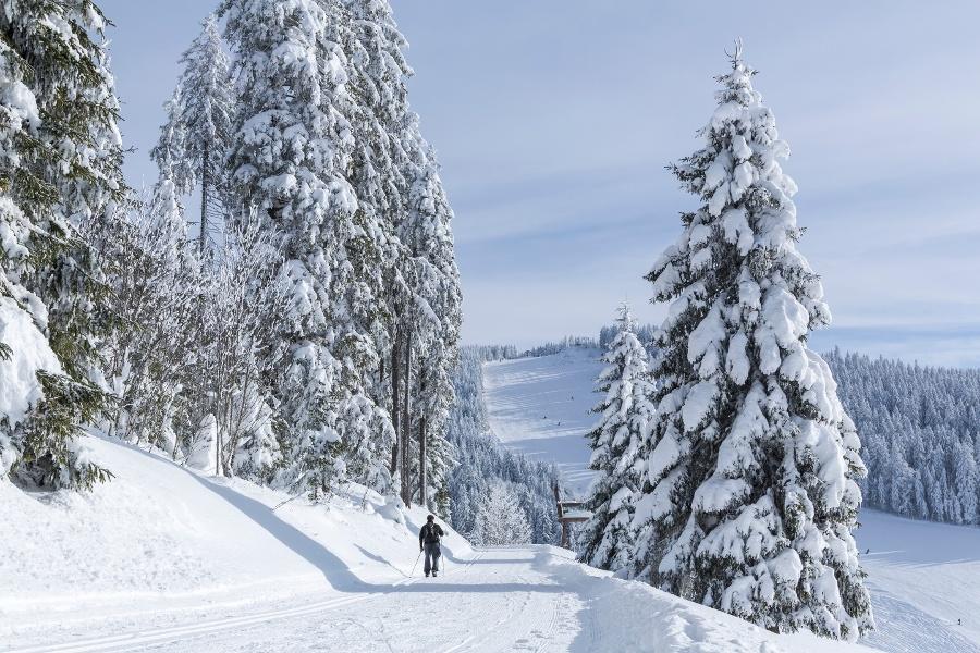 Fernskiwanderweg Schonach/Belchen - Etappe Breitnau