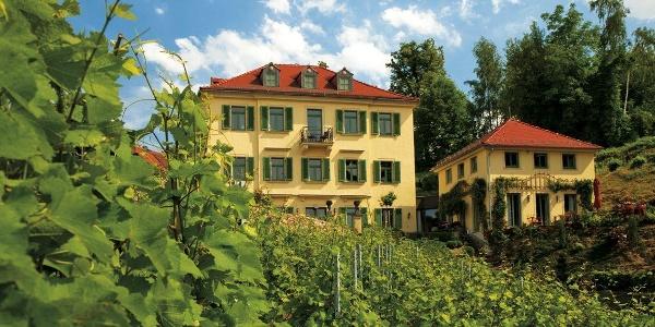 Rebenhaus mit Weinberg
