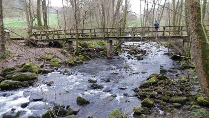 Brücke am Ende der Holzbachschlucht.