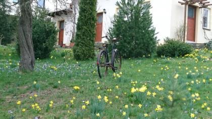 nette Gartendekoration am Wegesrand