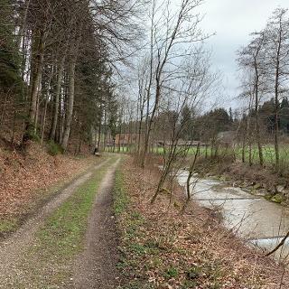 Hüswilerwald an der Luthern