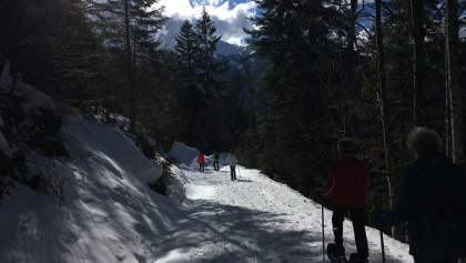 Schneeschuhwandern Brandenberg