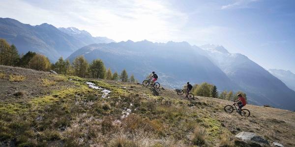3 Mountainbiker mit herrlichem Blick auf die Walliser Berge