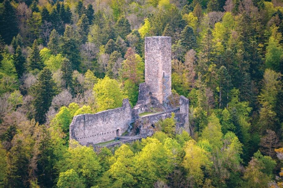 Bad Säckingen: Zur Burgruine Wieladingen