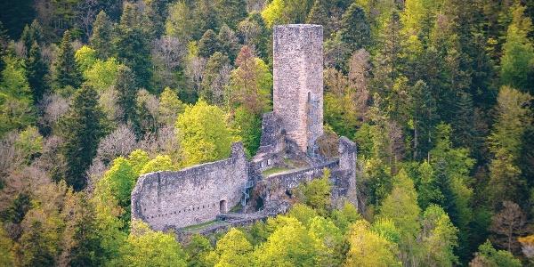 Burgruine Wieladingen