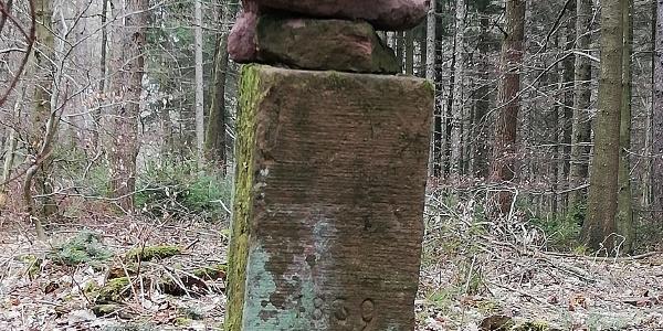 Morschenberg - Gipfel