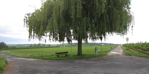 Wegekreuz nahe Klein Villip (Mai 2013)