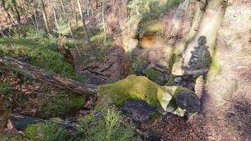 Foto Weg auf dem Kleinhennersdorfer Stein