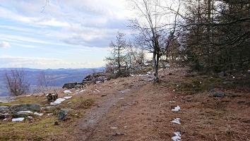 Foto Weg auf dem Hohen Schneeberg zum Aussichtsturm