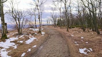 Foto Weg auf dem Hohen Schneeberg